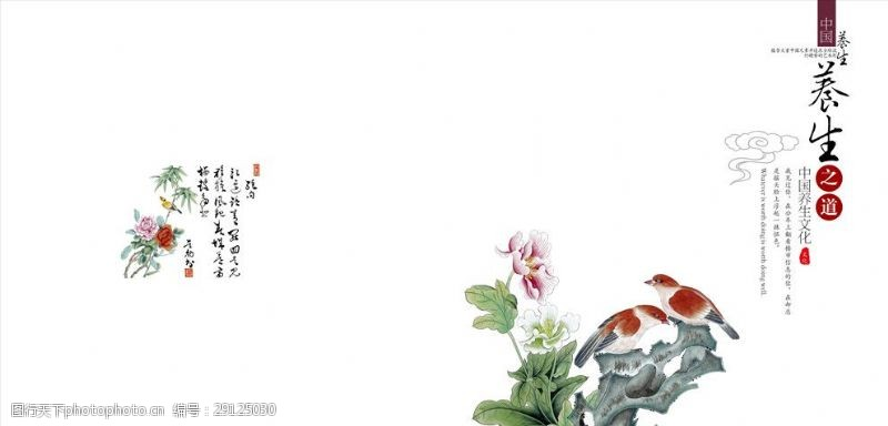 中国风养生文化封面设计