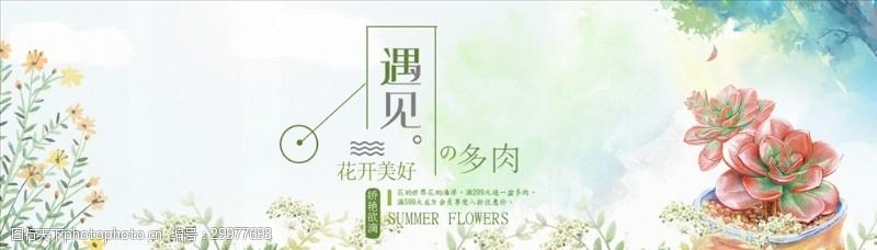 多肉植物春季活动海报