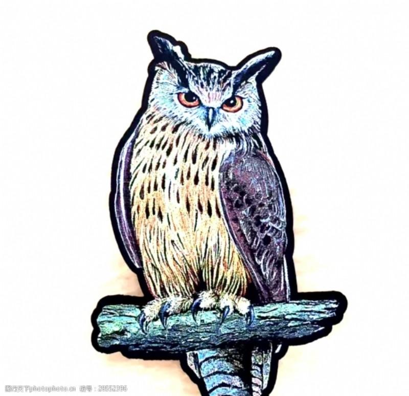 织唛猫头鹰