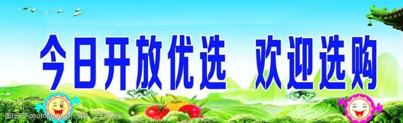 蓝色蔬菜今日开放优选欢迎选购副本