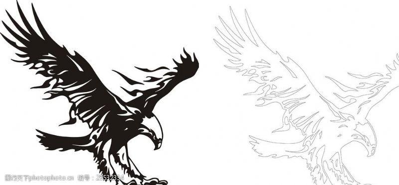 老鹰矢量图老鹰