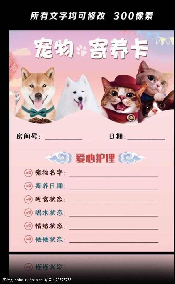 宠物卡片宠物寄养卡