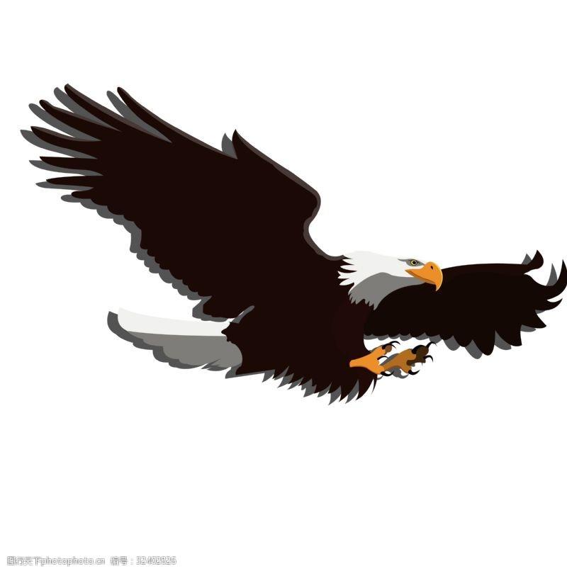 老鹰矢量图手绘天空之王鹰的矢量图