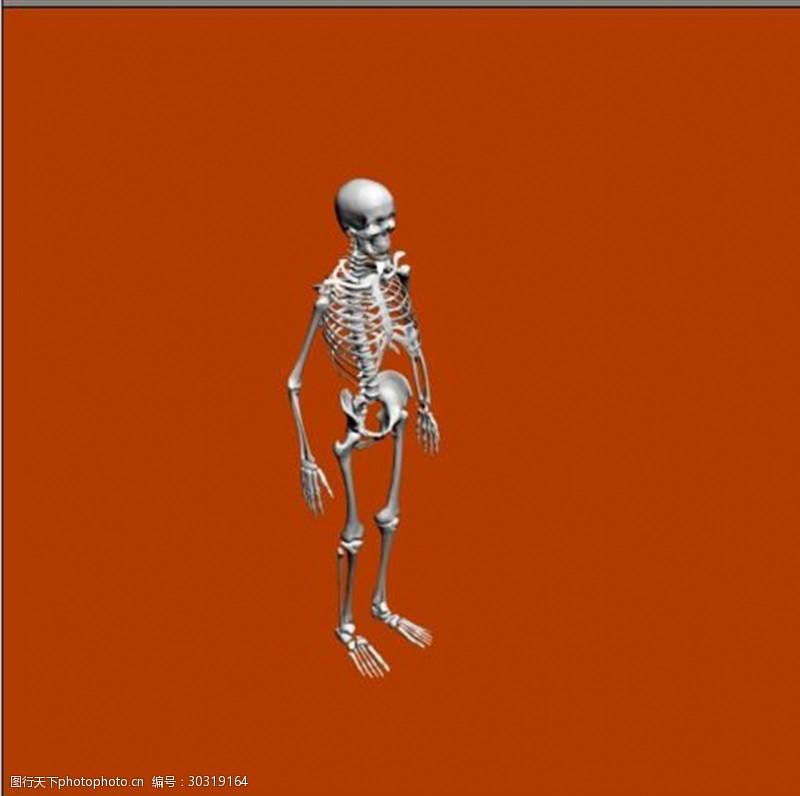 3d设计源文件人体骨骼