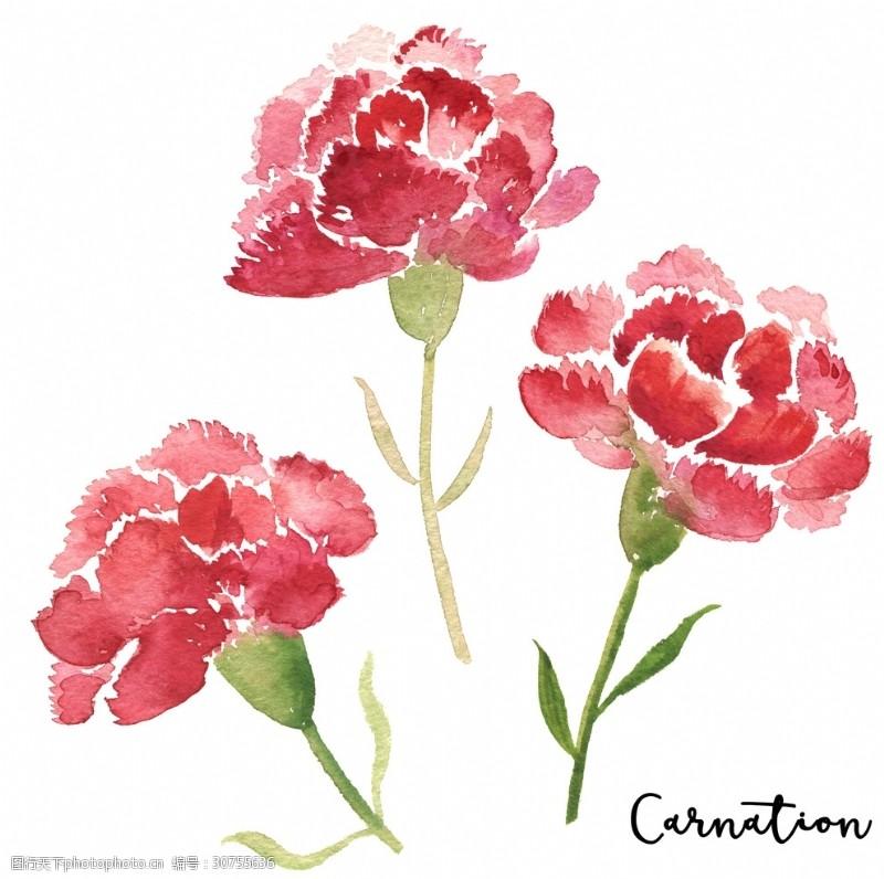 手绘服装设计花朵