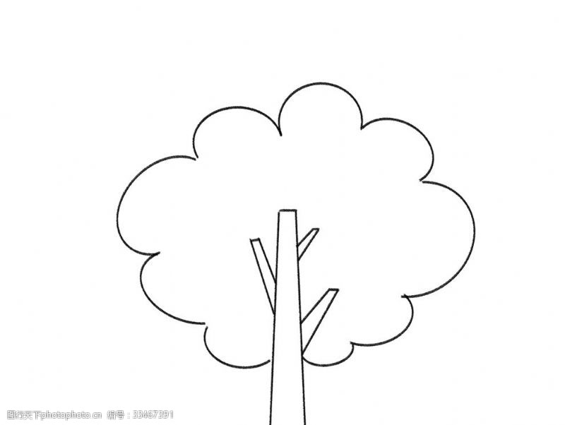 落叶树线稿树