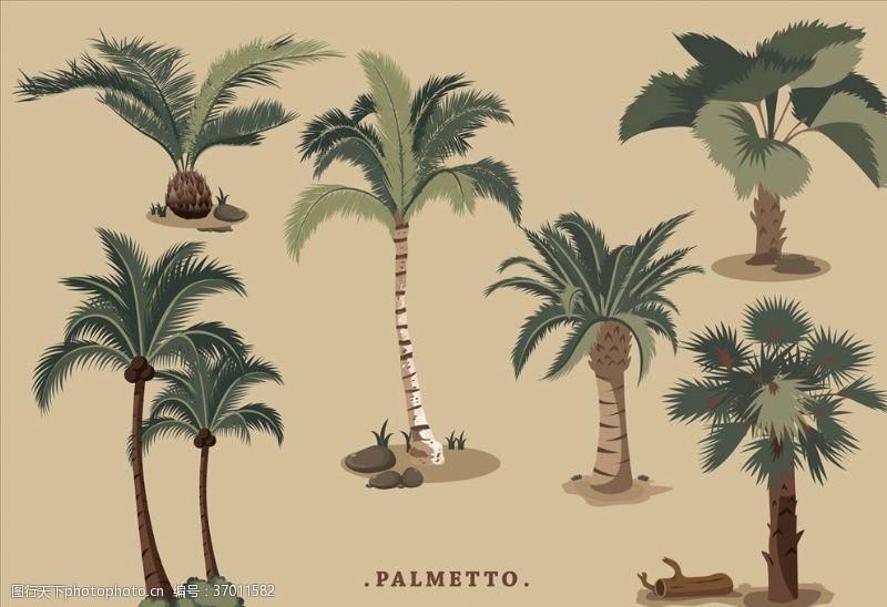 建筑家居椰子树
