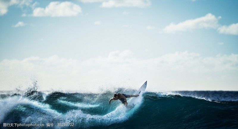 海上的冲浪者